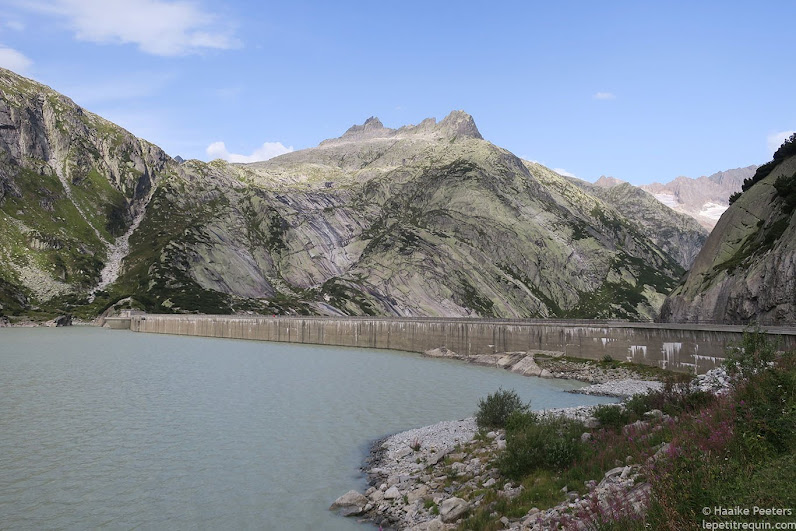 Grimselpass (Le petit requin)