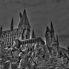 Hogwarts in B&W by Graeme Garton - City,  Street & Park  Amusement Parks ( hogwarts, universal studios, harry potter, castle, islands of adventure )