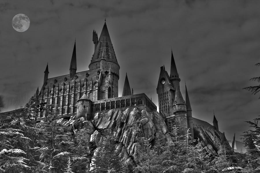 Hogwarts in B&W by Graeme Garton - City,  Street & Park  Amusement Parks ( hogwarts, universal studios, harry potter, castle, islands of adventure )