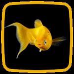Goldfish Live Wallpaper Icon