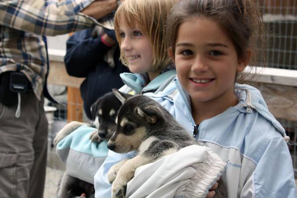 Thăm trại nuôi chó kéo xe ở Skagway