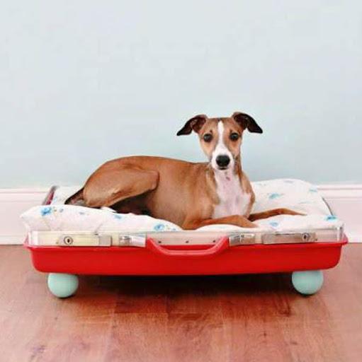 犬ベッドのデザインのアイデア