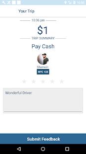 PayCab - náhled