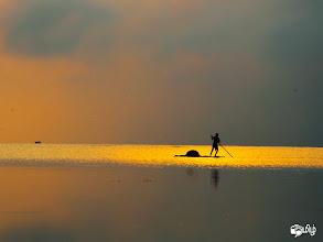 Photo: பாரிவேல்