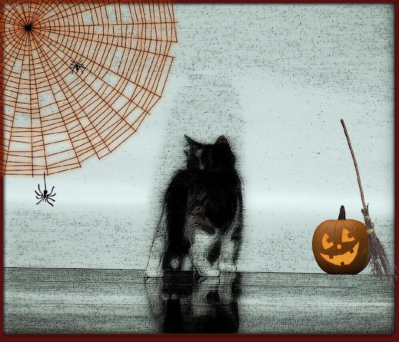 Purrrrr...fect Halloween di marisa_serafini