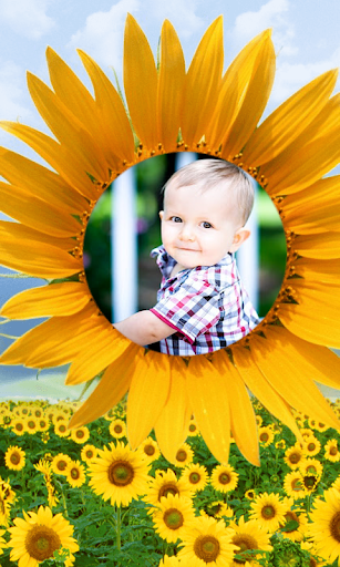 Sunflower Frames Photo Editor