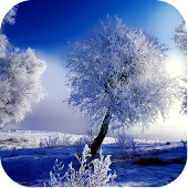 Cool Winter Backgrounds