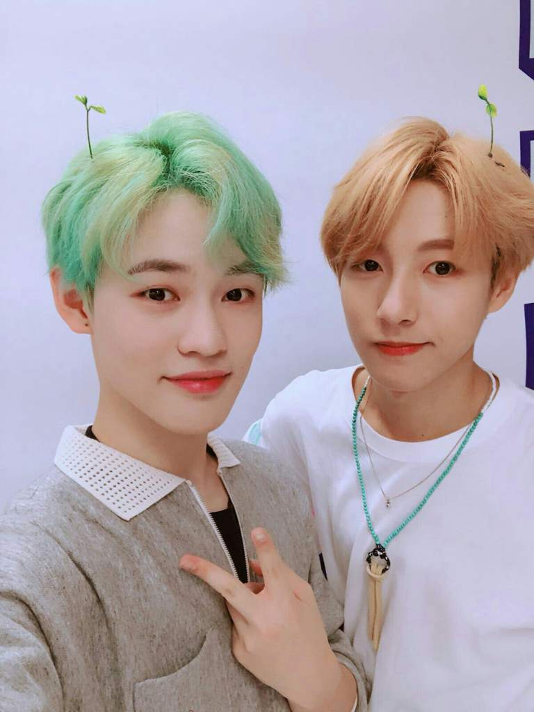 NCT Dream Chenle and Renjun
