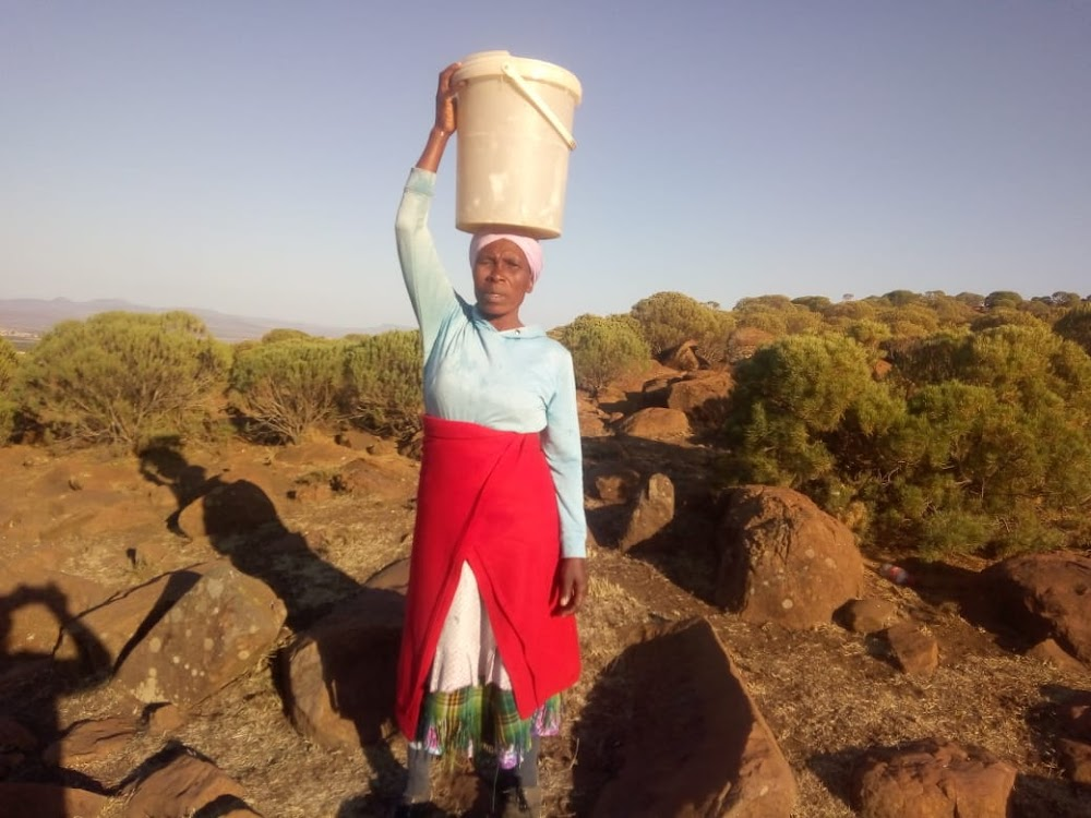 Droogte bedreig oor die Oos-Kaapse stad - TimesLIVE