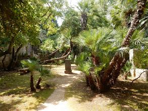 Photo: De botanische tuin van het Oceanografisch Instituut van Dubrovnik in een voormalig kloostercomplex