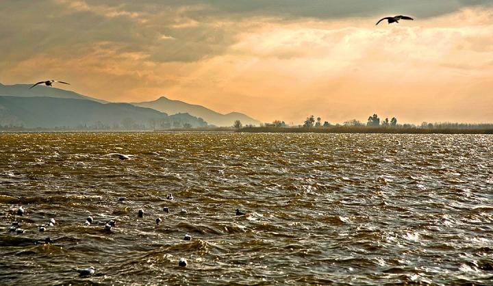 Lago di Massaciuccoli di vagero