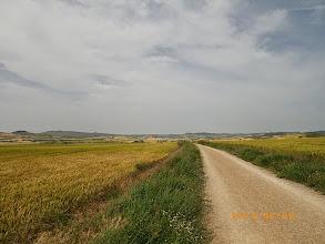 Photo: Camino Francès