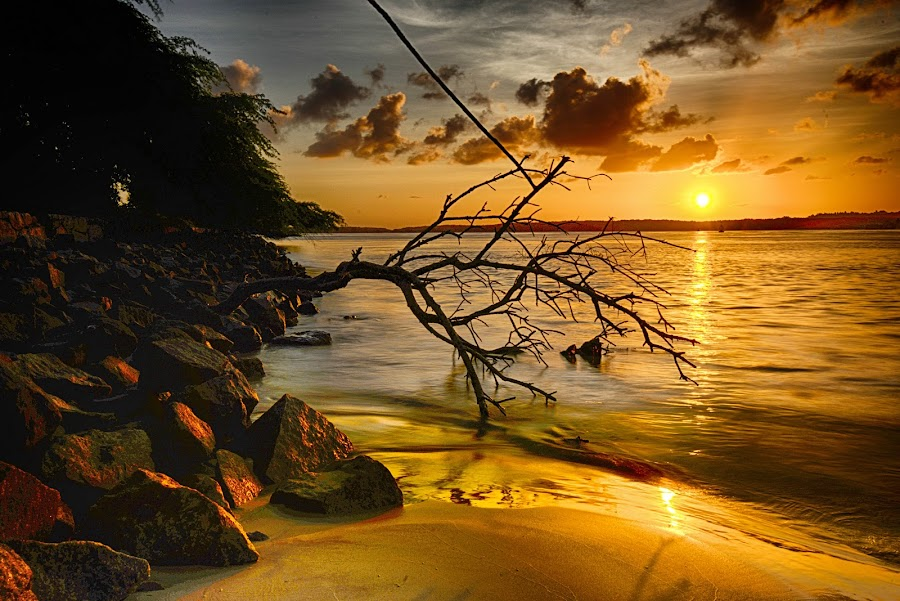 Praia do Y by Alexandre Carvalho - Landscapes Sunsets & Sunrises
