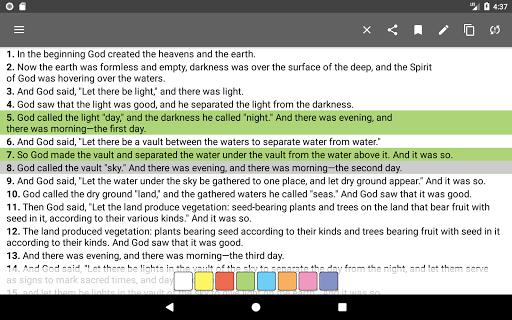 Bible Offline screenshot 18