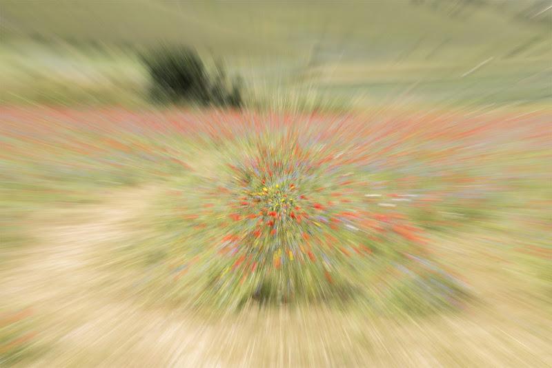 Castelluccio in versione Monet di Nefti-Monica