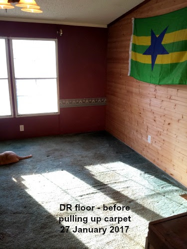 DR floor before carpet removed @ LP Painted Ponys