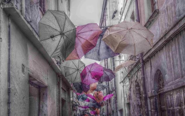 Pink rain di stefytina