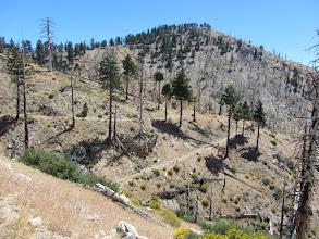 Photo: View southeast toward South Mt. Hawkins