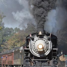 by Brian Baggett - Transportation Trains