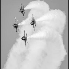 Blue Angels by Dave Lipchen - Black & White Objects & Still Life ( blue angels )