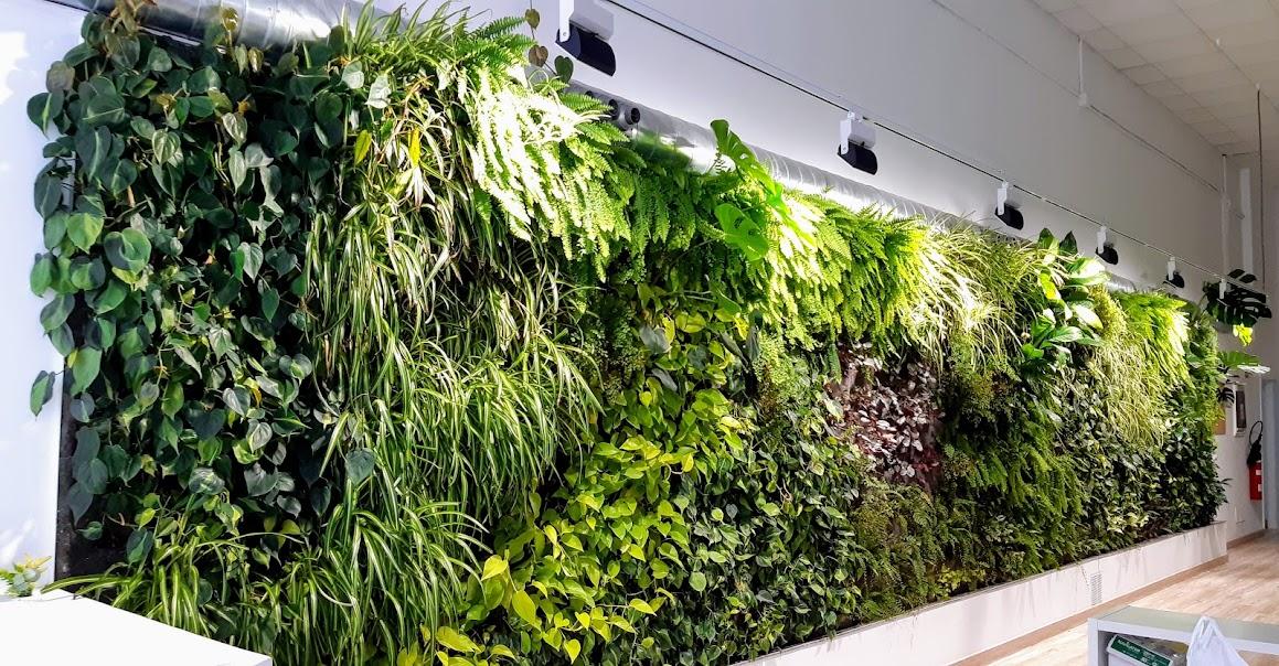 Jardín vertical oficina en el estado actual