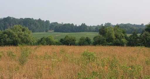 Virginia board rejects proposed 150 MW solar project