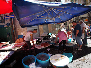 Photo: Fish market in Napoli. We were all very upset when a poor octopus managed to escape it's barrel only to become someone's lunch.