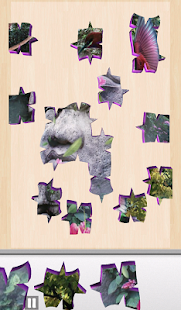 Live Jigsaws - Aviary Free- screenshot thumbnail
