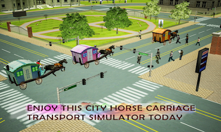 Horse Carriage Transpo...