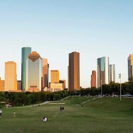 Blue Sky Over Houston by Bonnie Davidson - City,  Street & Park  Skylines ( sky, browns, greens, skyline, texas, trees, eleanor tinsley park, highrise, hill, blue, houston, buildings, cityscape, silver, landscape, park )