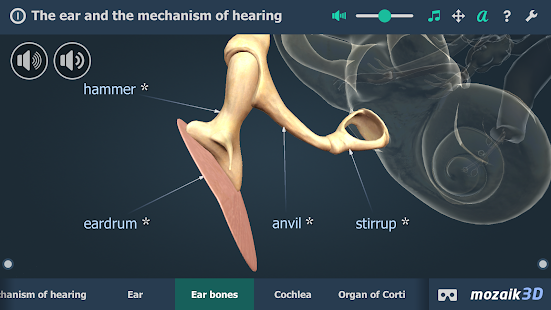 App The mechanism of hearing educational VR 3D APK for Windows Phone