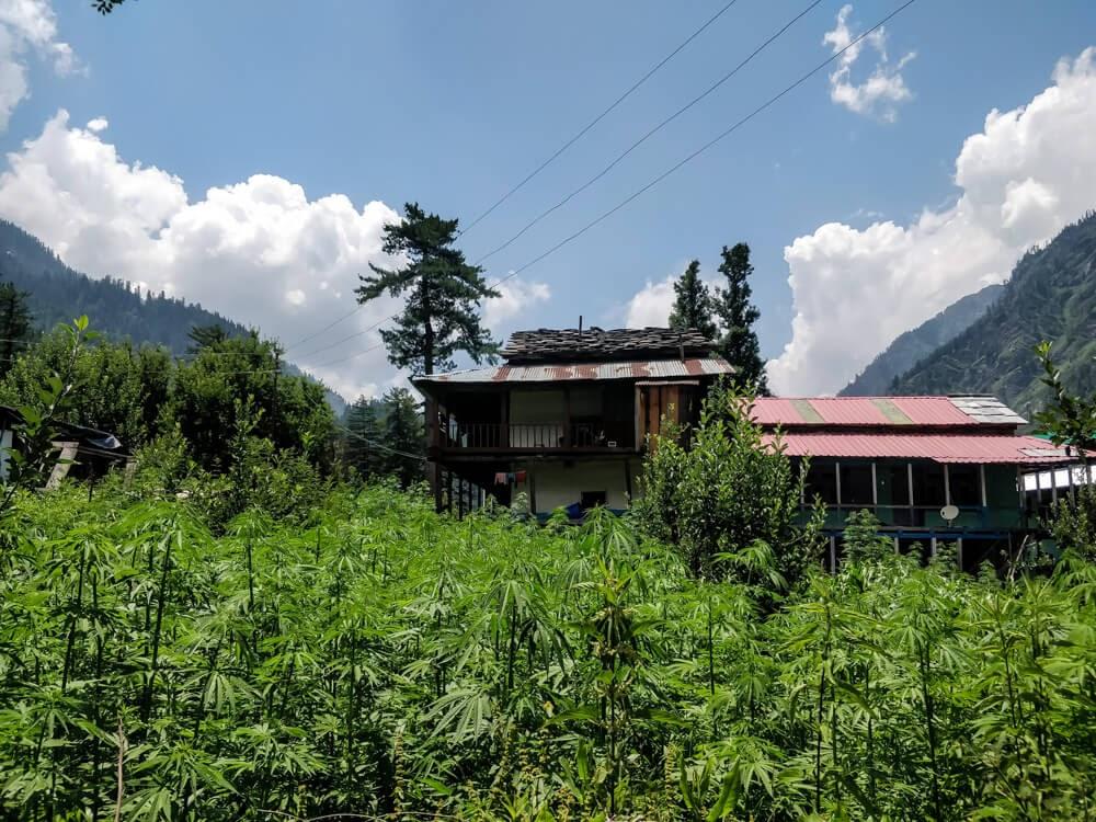kalga+village+parvati+himachal