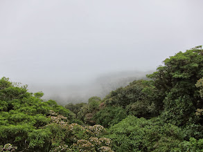 Photo: The clouds actually come in to the cloud forest