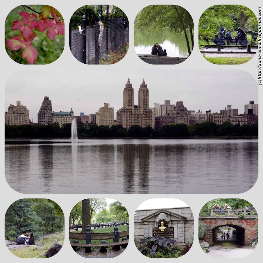 Ctntral-park-collage-a.jpg