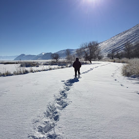 Let's go for a walk by Tracy Lynn Hart - Instagram & Mobile iPhone ( footprints, walking, friends, winter, season, snow, exercise )