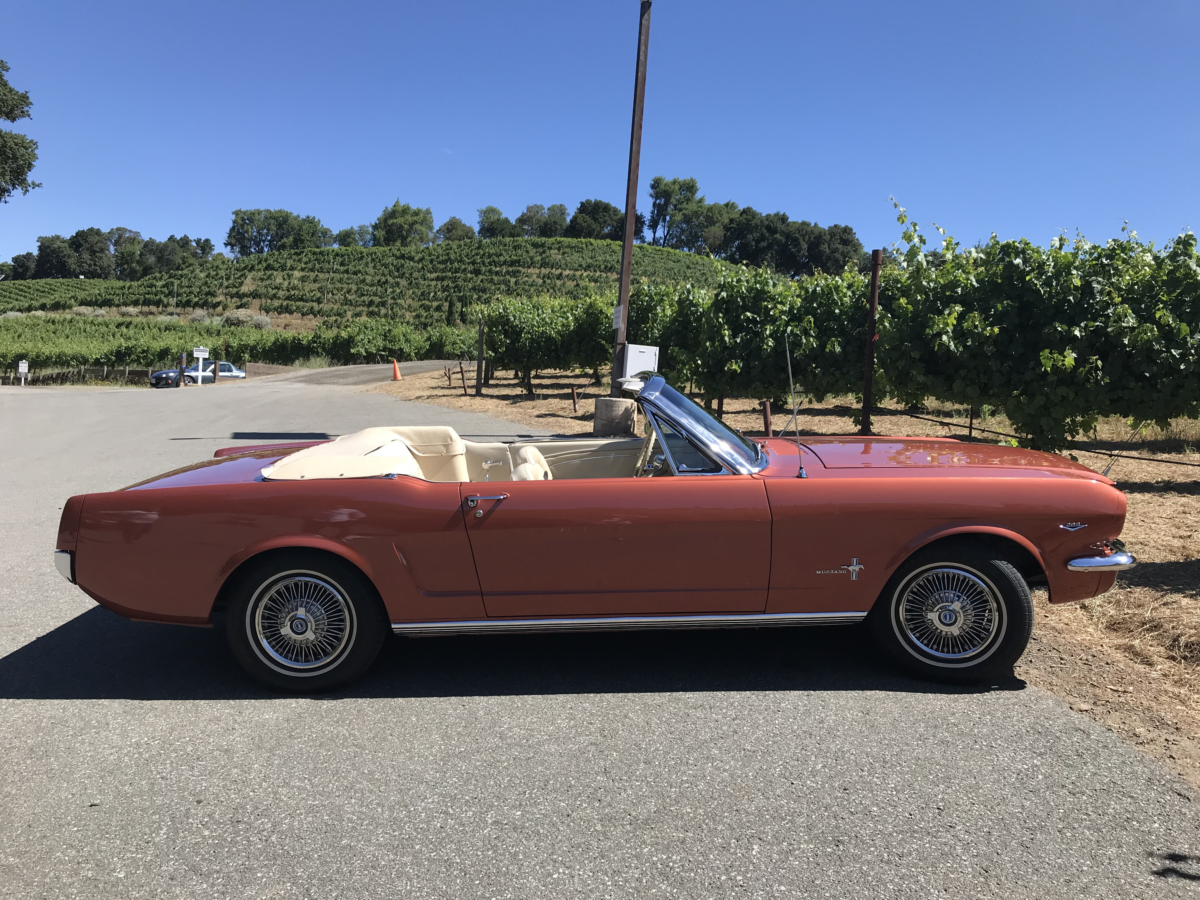 Ford Mustang Hire Cotati
