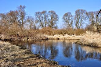 Photo: 54,3 km Nowy Dwór - rozgałęzienie rzeki, lokalne mostki, można płynąć prawą lub lewą odnogą