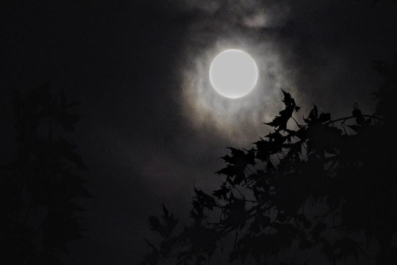 Le foglie e la luna di Glasperlen