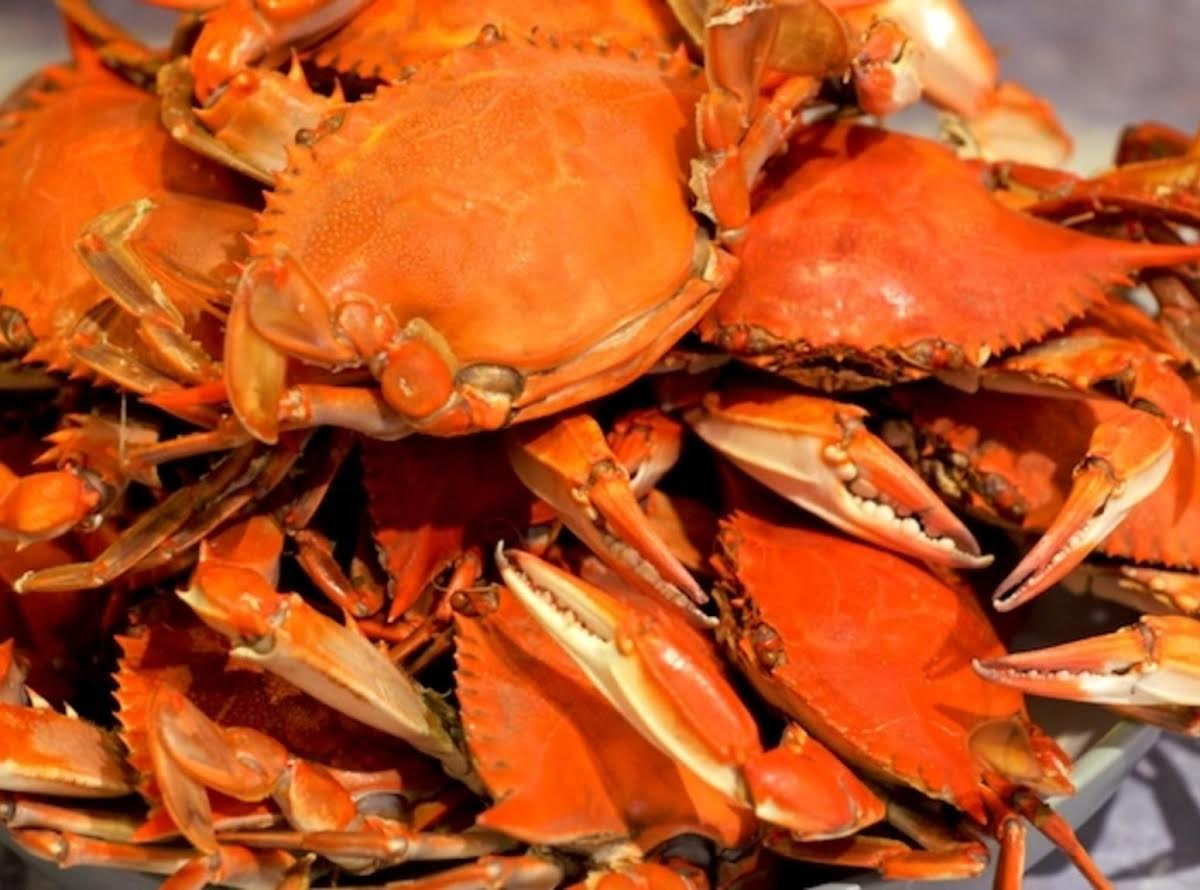 How To Cook Crab Just A Pinch Recipes