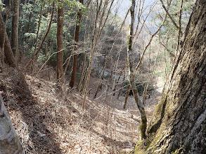 右下から登山道?
