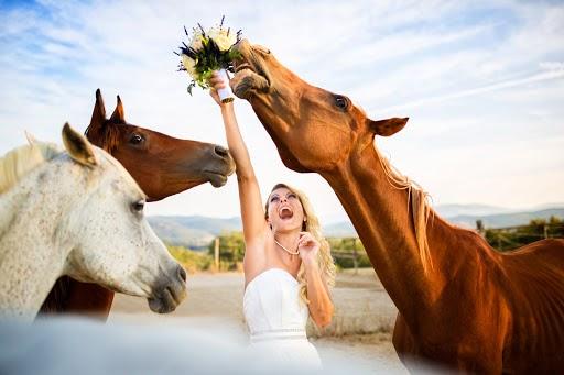 Wedding photographer Fabio Mirulla (fabiomirulla). Photo of 24.09.2019