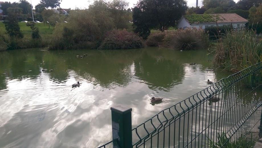 Foto Parque de Eirís 5