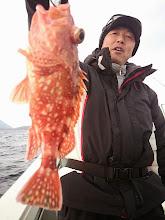 """Photo: """"ナルカミさん""""の初魚はアラカブでした!"""