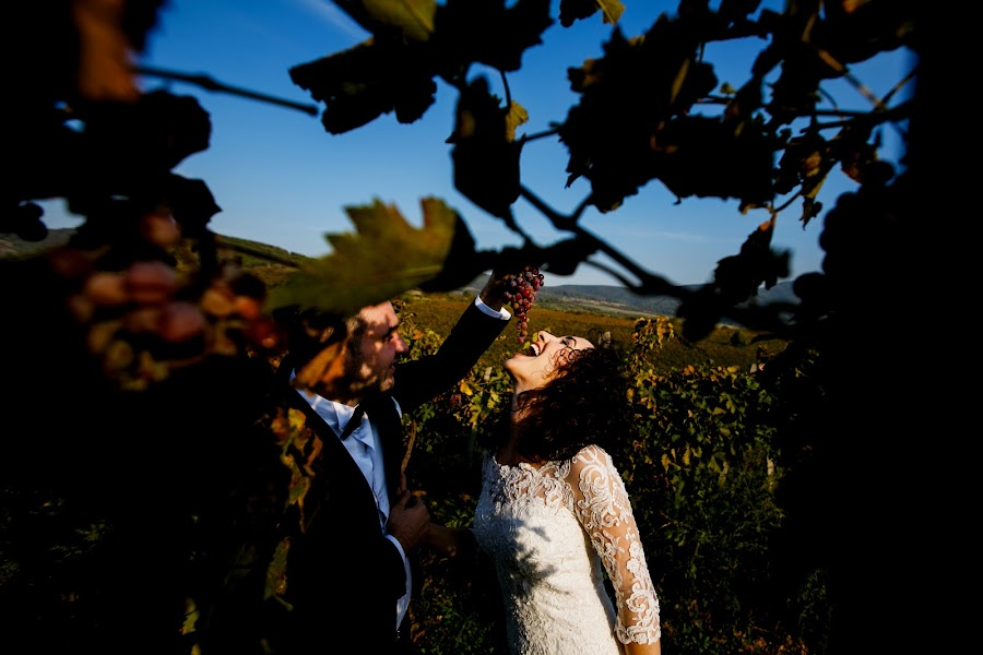 Wedding photographer Sabina Mladin (sabina). Photo of 11.12.2017