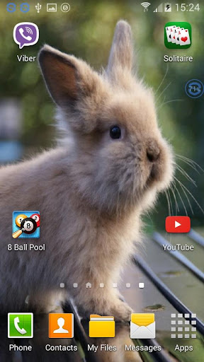 Rabbits SHAKE And Change LWP