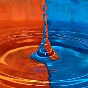 drops Dec 18a 2011f1204a.jpg