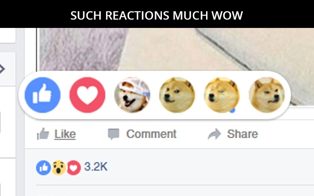 WOW  DOGE Reactions