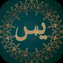 سوره یاسین همراه با صوت و ترجمه آفلاین icon
