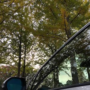 カローラスポーツ NRE210Hのカスタム事例画像 カロスポo23 ⬅︎ Fit o23さんの2020年10月28日08:01の投稿