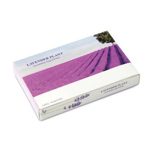 Lavender Planting Set